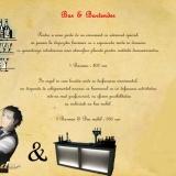 1 Barman & Bar mobil